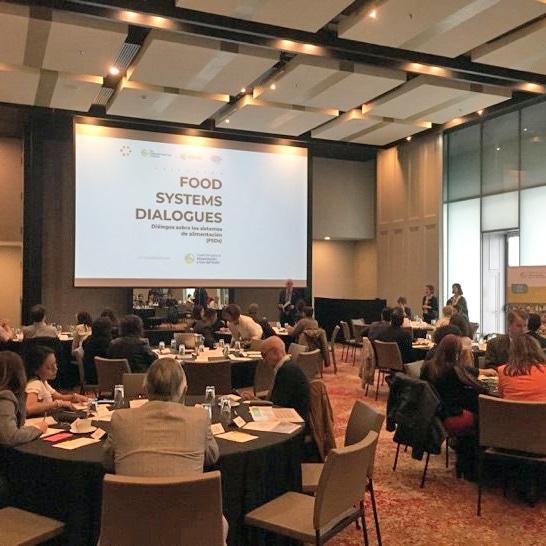 Los Diálogos sobre Sistemas de Alimentación (Food Systems Dialogues) inspiraron a crear ideas de cambio