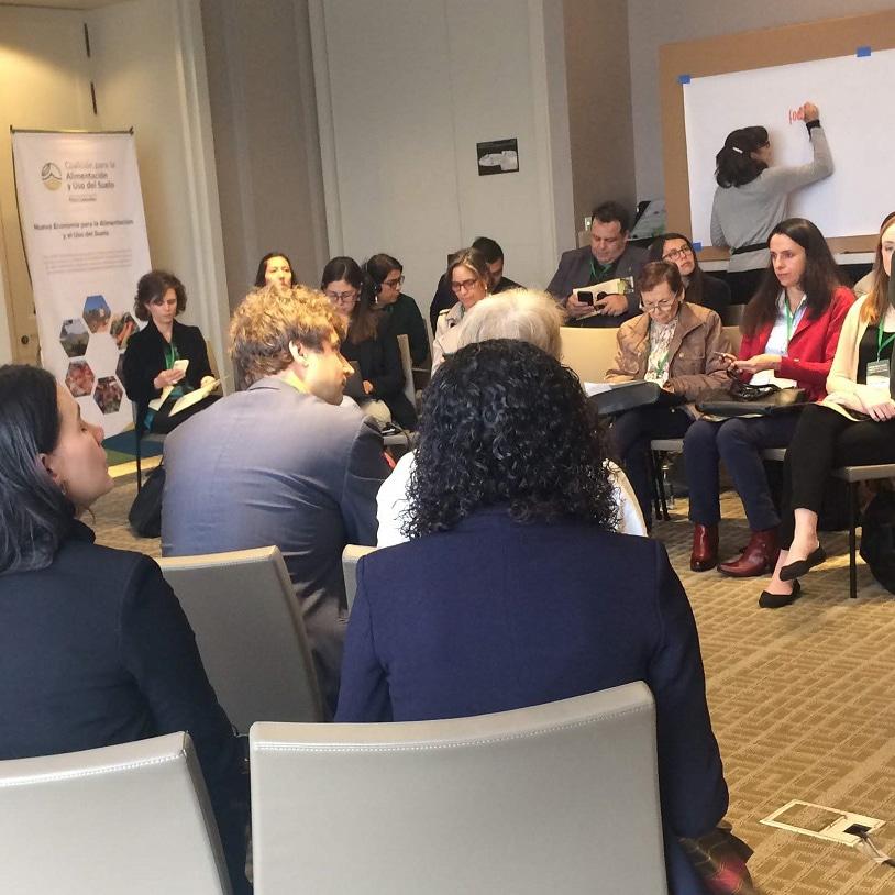 WWF y FOLU llamaron a una acción urgente durante la Asamblea General de la Alianza Tropical para los Bosques (TFA 2020)