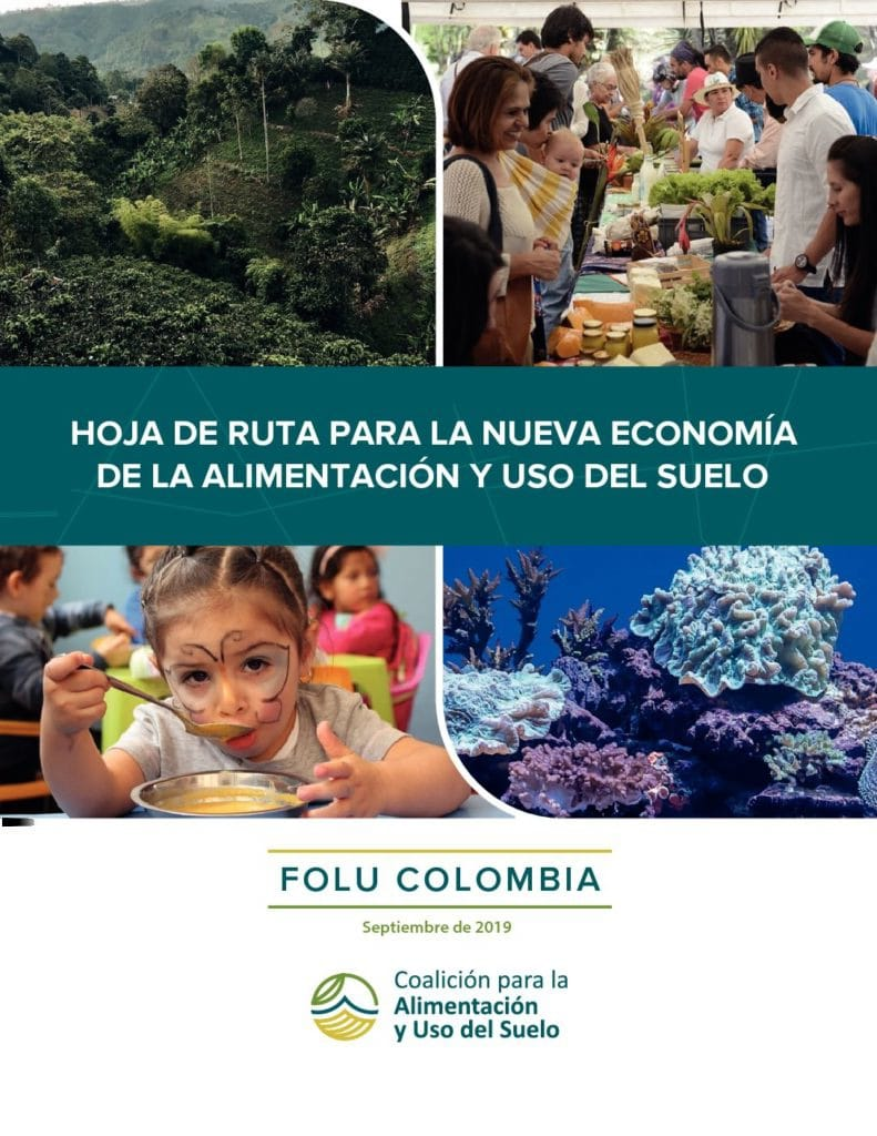 Hoja-de-Ruta-FOLU-Colombia-V2019-pdf-791x1024
