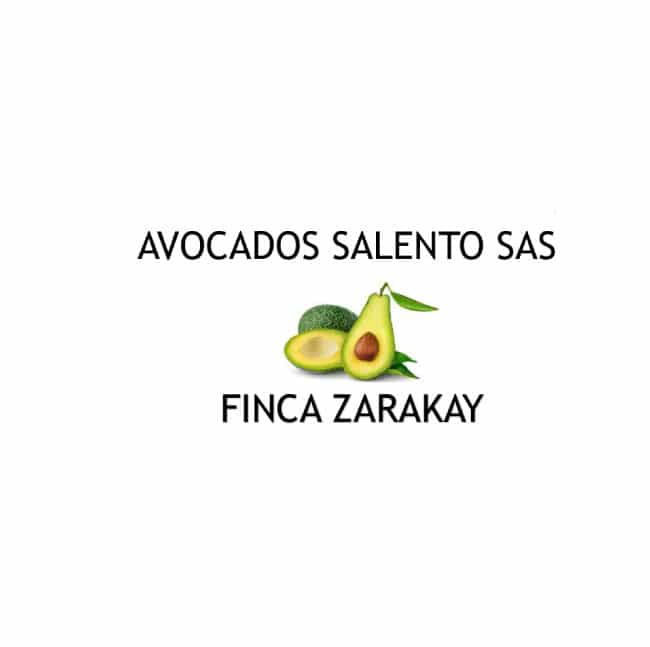 Avocados-Salento