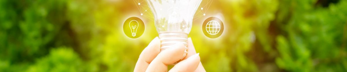 Concept save energy efficiency. Hand holding light bulb with icon on blurred tree background
