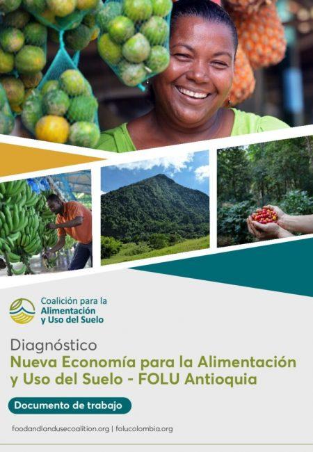 Diagonóstico-FOLU-Antioquia-VF1409-pdf-791x1024