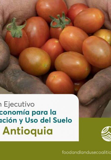 Resumen_Ejecutivo_FOLU_Antioquia-ISBN-V2-1-pdf-1024x724