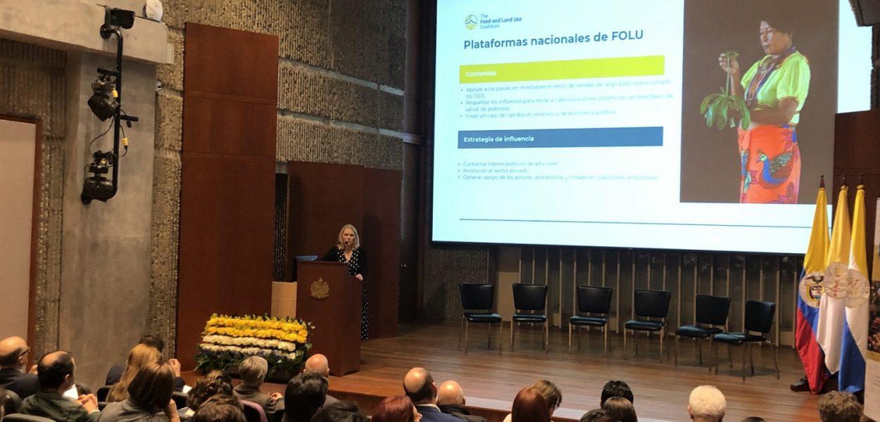 lanzamiento FOLU Global - Bogota Colombia (17)